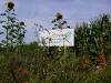 pict0995-foto-bloemenrand-vaartje-sept-2008-medium